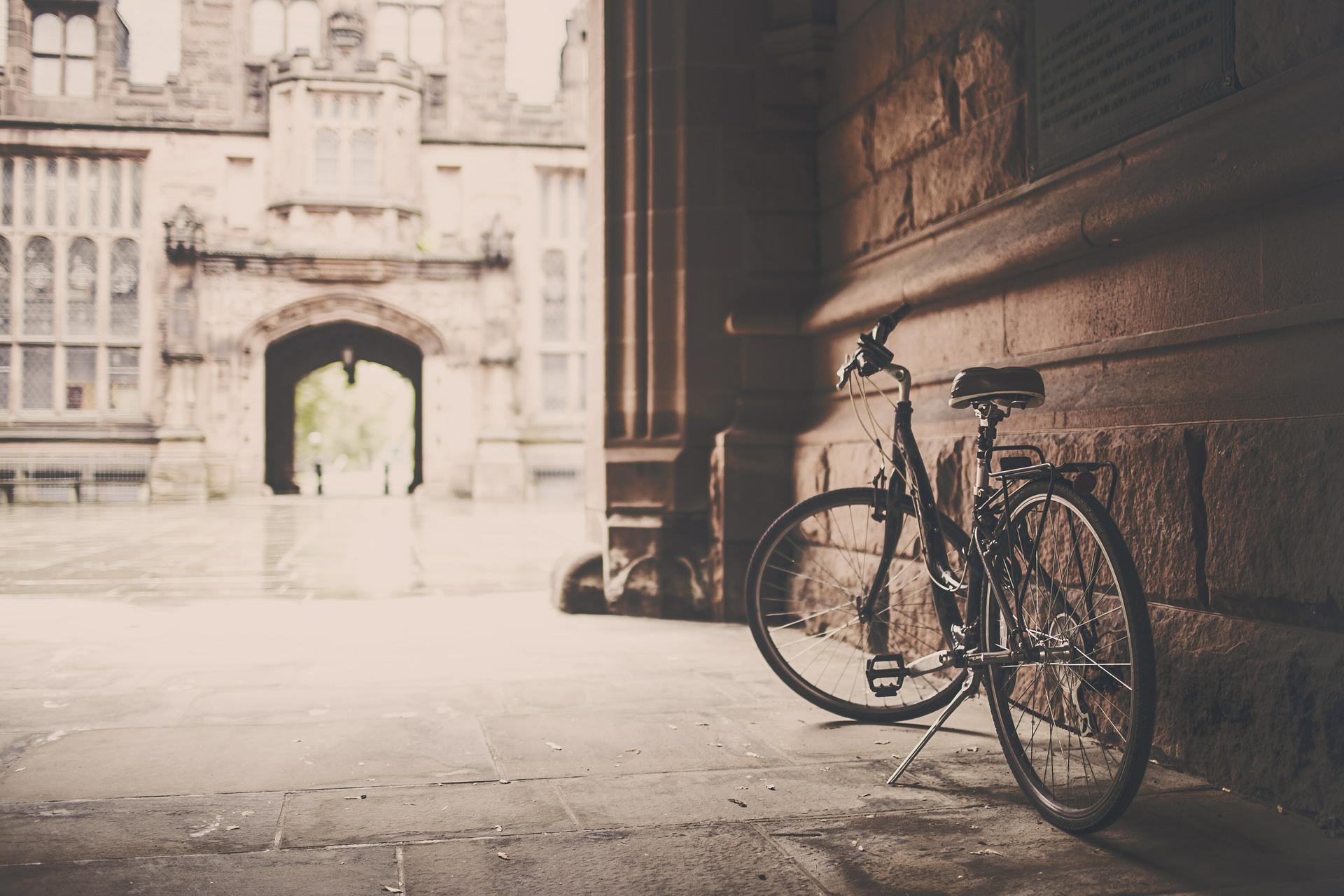 Cycle at Rentomo